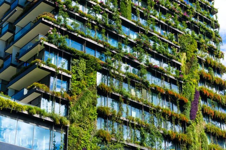 zielone_miasta